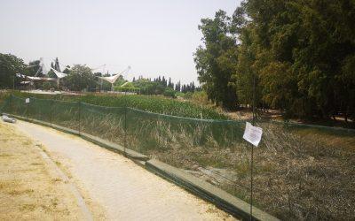 Το Μητροπολιτικό Πάρκο «Αντώνης Τρίτσης» αλλάζει όψη